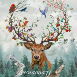 freetoedit mountains deer nature pinetrees ecimagineabrighterreality