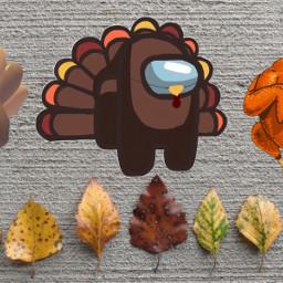 unsplash turkey freetoedit