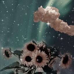 replay remixit art beauty heypicsart makeawesome sunflower cloud background wallpaper freetoedit