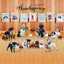 thanksgiving colorpaint mystickers myartwork dogs cats birds turkeys pies digitalart mydigitalart indiancorn freetoedit