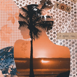 stickercollage brownaesthetic sunset silhouette discoball freetoedit