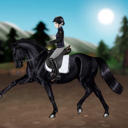 dressage horse rider freetoedit