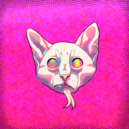 sphynx sphynxcat popart art drawing digitalart digitalmakeup digitalartwork