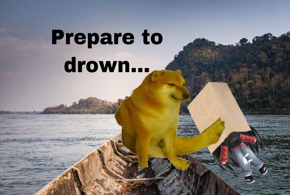 Cheems drowning a gacha kid 🤠 #gachaisgay #cheems #epic