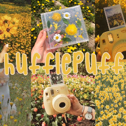 hufflepuff hufflepuffaesthetic yellow yellowaesthetic aesthetic hogwarts harrypotter harrypotteraesthetic hp freetoedit