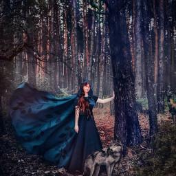 nature wildnature forest darkforest forestgirl wolf raven deer fog magic