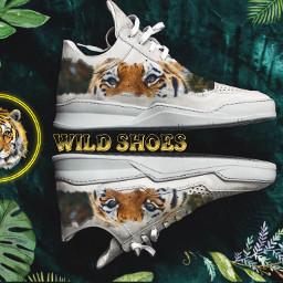 tigres wildcats❤️ shoes4fashion sport tigger freetoedit wildcats ircdesignyourdreamshoe designyourdreamshoe