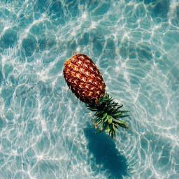 freetoedit pinaple summerdays