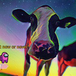 now never interesting france travel sky galaxy art nature night photography vache animals petsandanimals pretty asethetic freetoedit