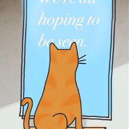 cat typography illustration mydrawing madewithpicsart seen freetoedit