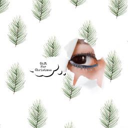 background brusheffect eye textmessage stickers freetoedit ircataglance ataglance