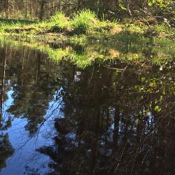 freetoedit water lake aesthetic waterchallenge pcwateraroundme wateraroundme
