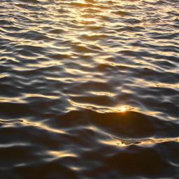 freetoedit pcwateraroundme nature water ripplesinthewater seawater darkwaters warmsunnylight goldenlight reflectioninwater naturesbeauty naturephotography