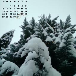 snow inthegarden winterwonderland freetoedit srcdecembercalendar decembercalendar