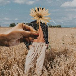 freetoedit aesthetic bronze filters vintage filtereffect film grain graineffect flower