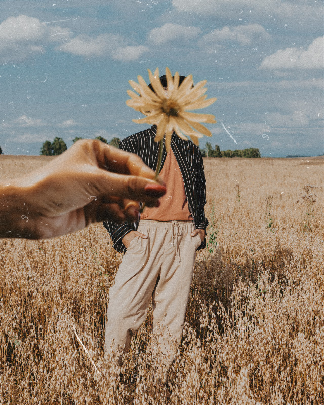 #freetoedit #aesthetic #bronze #filters #vintage #filtereffect #film #grain #graineffect #flower