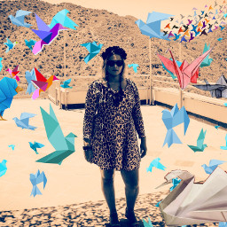 oragami oragamibirds love oudtshoorn southafrica romantica memories gorgeous feels feelings nostalgia twinmamma mommahood babe honeybunch lovelovelove loveconquersall freetoedit