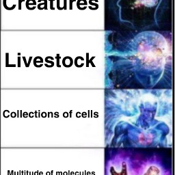 meme funny idkgotbored freetoedit