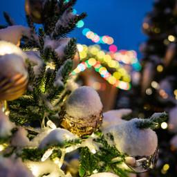 freetoedit christmas christmasbackgrounds christmasbackground tree