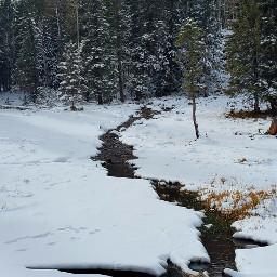 winter snow naturelovers