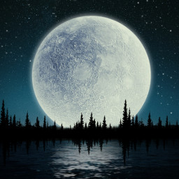 freetoedit foret myedit madewithpicsart landscape night stars moonlight silhouette tree sky nature araceliss moon picsart makeawesome becreative heypicsart
