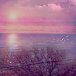 madewithpicsart background backgrounds wallpaper sunset view landscape sea sky pink freetoedit
