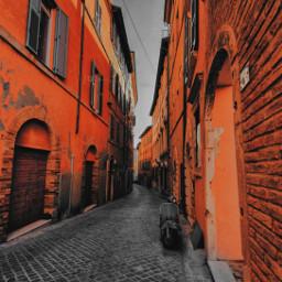 street orange vacation fotoedit irangeandblack white black freetoedit