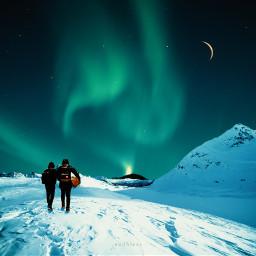 freetoedit northernlights winter snow nightsky