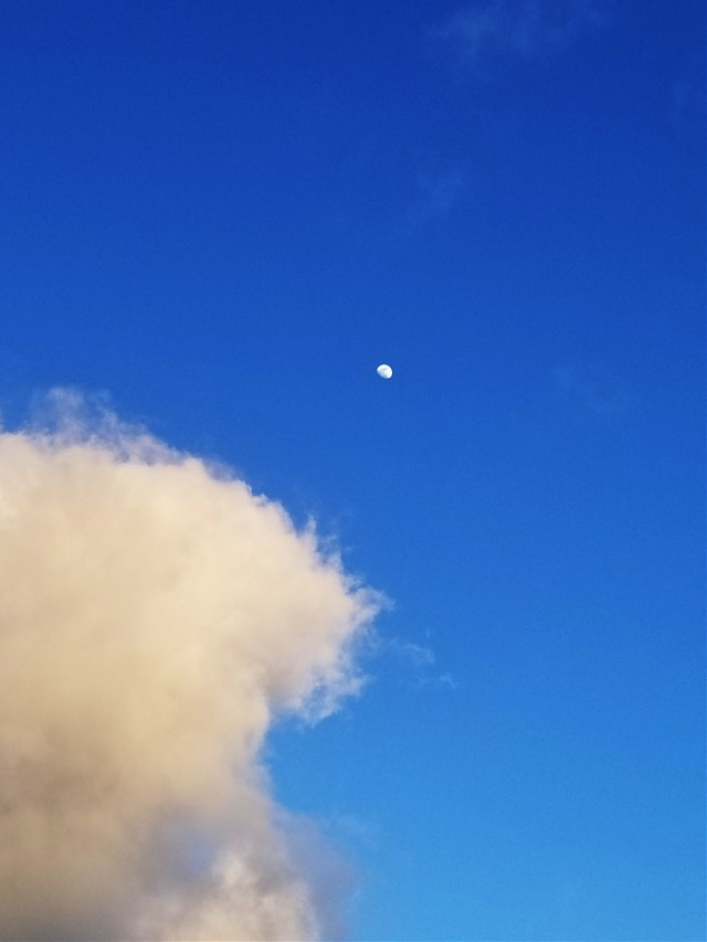 #myphotography #skylover #cloudlover #moonlover #naturephotography #freetoedit