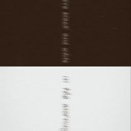 5sos 5soswallpaper blackandwhite blackandwhiteaesthetic lyricsquote blurry wallpaperaesthetic