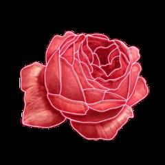 rose flower fanartofkai pcbeautifulbirthmarks tattooday echumananimalhybrid taemin holographic arianator kai wattpadcover king mspedit arianagrande fanart junghoseok melaniemartinez follow summer milliebobbybrown kimnamjoon angel seventeen rain youtube freetoedit
