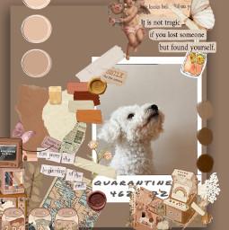 tanaesthetic pretty chanllange glancechallenge hipicsart freetoedit ircpuppydogeyes puppydogeyes