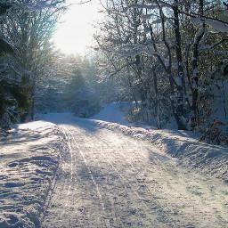 freetoedit winter snow road nature myphoto landscape