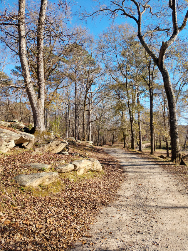#pcmyfavoritememory #myfavoritememory #nature #outdoors #naturelover #winter #january #januaryvibes #road #hike #hiking #myphoto
