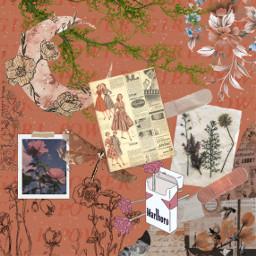 pinkaesthetic collage floral flowers freetoedit art edit mutepink pastelpink aesthetic feminity