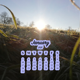 challenge beaitiful january2021 nice sun frost grass freetoedit srcjanuarycalendar januarycalendar