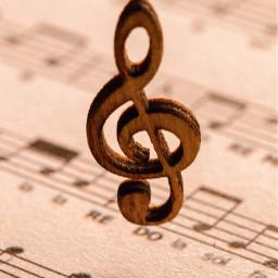 music photography closeup freetoedit