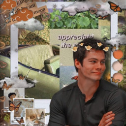 dylanobrien cute wallpaper collage