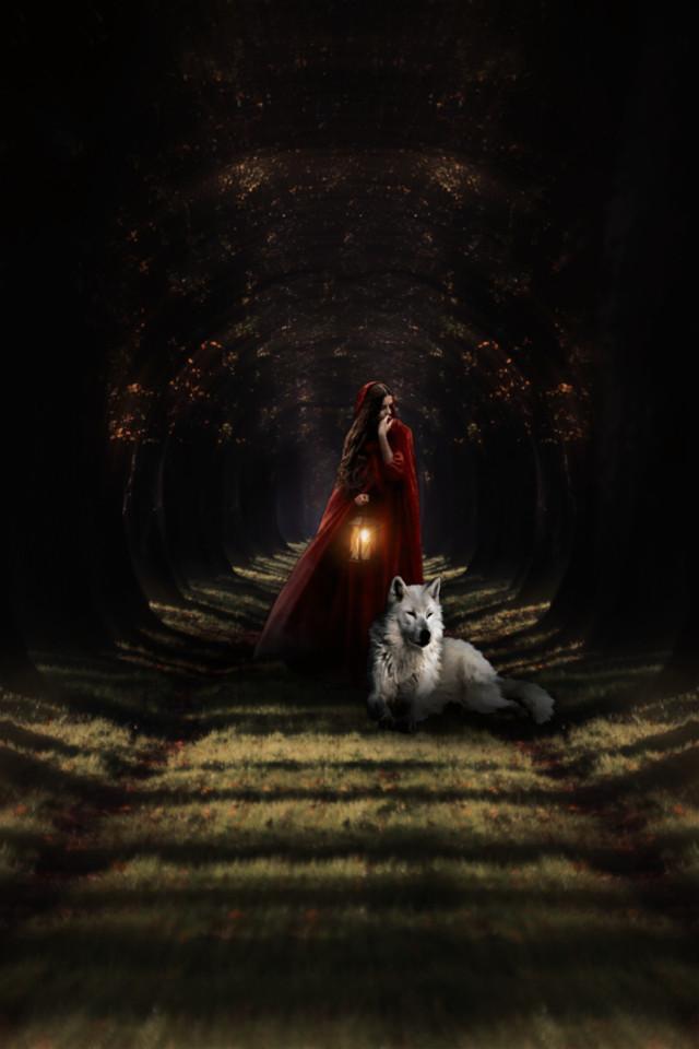#myedit #madewithpicsart #woods #fairytale #redridinghood #wolf #picsarteffects #mirroreffect #blureffect #radialblur #focalzoom #adjusttools #brl2effect