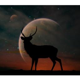 stag galaxy planet nature balance life beautiful freetoedit