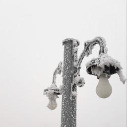 winter snowing snow frozen foggyday cold remixit light urban street freetoedit