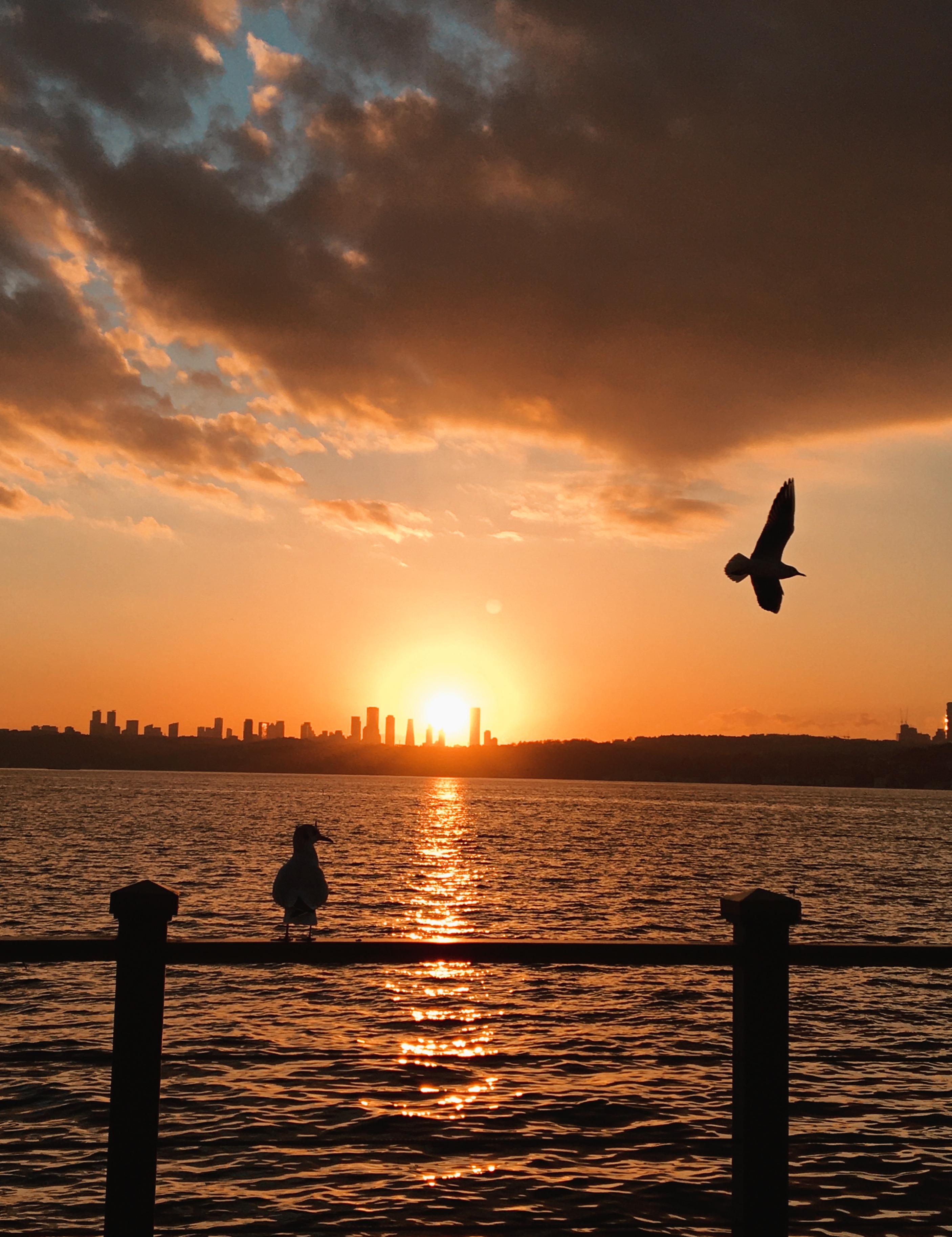 Beautiful sky ❤️ #photography #photographer #nature #sky #sun #sunset #followme #travel #traveller #fotografia #istanbul #turkey #beach #picsart #birds #a