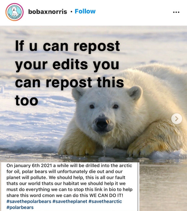 #Theydeservetolive#PolarBears#Repost
