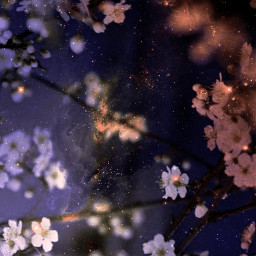 replay background backgrounds wallpaper makeawesome moon creative flowers glow freetoedit
