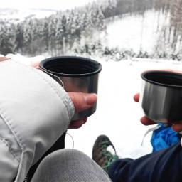 wanderlust snowyforest tea winter