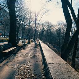 freetoedit verticalshot dimension projection city seasonal angle myphoto park walk beautifulwalk people