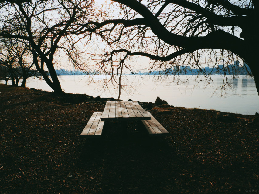 #places#city#afternoon#chair#table#underatree#hudsonriver#mycity#addyourself#walking#mycamera#myview.