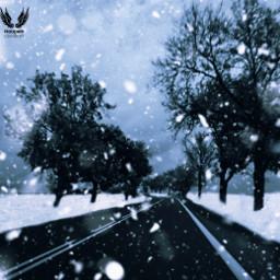 freetoedit icescape winter snowfall trees scene