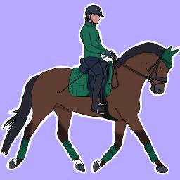 equestrian-editz equestrian