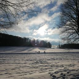 snow winter winterwonderland sun shine sledging fun beautiful sunday freetoedit